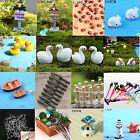 Miniature Fairy Garden Ornament Decor Pot DIY Craft Accessories Mini Dollhouse