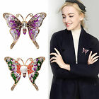 Chic Women Crystal Diamante Butterfly Pin Brooch Vintage Jewelry Decoration