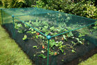 0.625m High- Fruit Veg Cage Plant Protection Pest with 4mm Butterfly Netting Kit