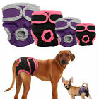 Внешний вид - Dog Sanitary Nappy Diaper Pet Physiological Pants Shorts Underwear for Dogs S-XL