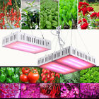 LED Grow Light Kits Full Spectrum 300W 600W Lamp for Hydroponic Medical Plant