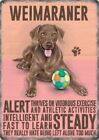 WEIMARANER DOG ANIMAL METAL SIGN PLAQUE PICTURE PRINT OTHER BREEDS LISTED 1297
