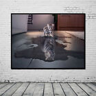 Huge Wall Decor Abstract Unframed Modern Art On Canvas Cat Or Tiger Oil Painting