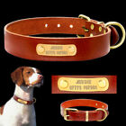 Personalized Dog Collar Leather Name ID Tags Engraved for Sm