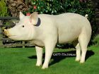 Life Size Pig Model Large Mannequin L165cm X  H73cm 3 colours