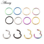 Titanium Hinged Segment Ring Hoop Ring Ear Lip Nose Septum Ring Piercing 14g 16g image