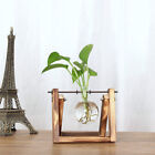 Table Hydroponic Wooden Plant Flower Stand Vases Purify Chemistry+ 1/2/3 Beakers