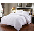 Comforter Down Alternative White Twin Full Queen King Comforter set 4 Size US image