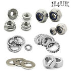 M2-M10 A2 Stainless Metric Full Nuts Serrated Flange Lock Nut Nylon Hex Head