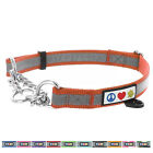 Pawtitas Pet Obedience Training Collar Reflective Martingale Chain Dog Collar