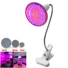 Adjustable LED Grow Light Lamp Bulbs with Desk Holder for Indoor Plant Growing