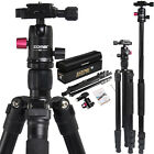 M3 Lightweight Alluminum Camera Tripod Monopod with Metal Ball Head for Camera