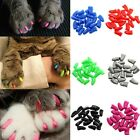 100pcs Cat Pet Nail Caps Soft Claw Adhesive Covers Dog Paws Protector Kitten Toy