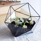Geometric Glass Terrarium Box Succulent Flower Pot Plant Display Container Decor