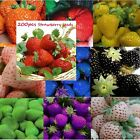 200 pcs 10 kinds Strawberry Seeds Nutritious Delicious Fruit Vegetables Fragaria