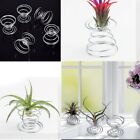 1/2/4Pcs Air Plant Stand Holder Container Base Tillandsia Planter Display Rack