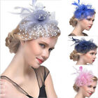 Women's Vintage Flower Feather Mesh Net Fascinator Hair Clip Hat Party Wedding