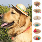 Cat Puppy Dog Kitty Hawaii Hat Custom Funny Straw Hat For Dog Cat Ear Pet Gift