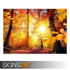 AUTUMN IN GERMANY (AD981) NATURE POSTER - Photo Poster Print Art A0 A1 A2 A3 A4