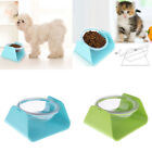 Adjustable Small Pet Dog Cat Food Bowl Dog Supplies Dishes Feeders Fountains