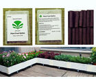 Natural & Organic All Purpose Plant Food Spikes Fertilizer