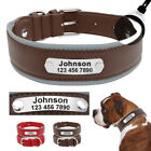 Leather Dog Collars for Large Dogs Personalized Reflective for Pit Bull Bulldog