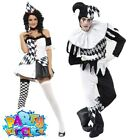 Kyпить Adult Harlequin Clown Costume Halloween Jester Mens Ladies Fancy Dress Outfit на еВаy.соm