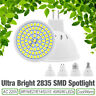 E27 E14 MR16 GU10 2835 SMD LED Spotlight Energy Save Bulbs Warm/Cool White Lamp