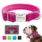 Personalized Dog Collars Plush Padded Reflective Pet Name ID Tags Pink Blue S-L