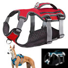 Web Master No Pull Dog Harness Reflective with Lift Handle for Large Dog Pitbull