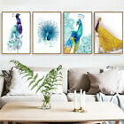 Beautiful Peacock Canvas Art Oil Painting Poster Room Picture Wall Home Decor