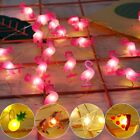 Внешний вид - 2M LED Flamingo String Light Kids Birthday Party Decor Pineapple Wedding Supply