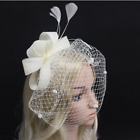 White Ivory Wedding Veils Bridal Accessories Cover Face Feather Birdcage Clip Ne