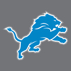 Detroit Lions Vinyl Sticker / Decal * NFL * NFC * North * Football * MI * on eBay