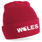 Wales Rugby Six Nations Cardiff Swansea Wrexham Beanie 7 Farben Fußball