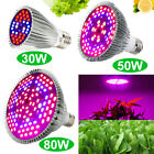 30W 50W 80W Full Spectrum LED Grow Light Bulb E27 Lamp for Indoor Plant Growing