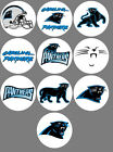 Carolina Panthers Set 10 Button or Magnet 1.25 inch $5.0 USD on eBay