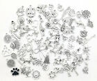 Different Types Tibetan Silver Charms Pendants beads Craft Jewellery 2