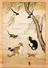 Asian Antique Art Pussy Cat Kitty -47