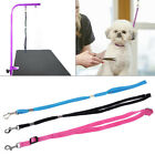 Durable Pet Leash Cat Dog Grooming Loop Cable Rope Leashes for Beauty Bathing