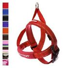 EzyDog Dog Harness Quick Fit One Click Adjustable Reflective Ezy Red