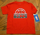 NBA Chicago Bulls Toddler Red Cotton T-Shirt, Sizes, NEW on eBay