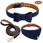 Soft Pet Leash Cat Collar Dog Scarf Set Puppy Harnesses Bowknot Kitten Gifts US