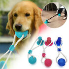 Multifunction Pet Molar Bite Toy Interactive Fun Pet Toys with Suction Cups Dog