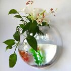 Acrylic Plant Fish Wall Mounted Bowl Tank Hanging Bubble Aquarium Plants Vase
