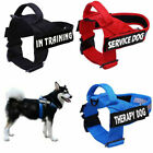 Pet Dog Harness Reflective No-Pull Trainning Vest Collar with Handle & 2 Patches