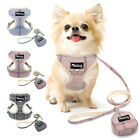 Soft Dog Vest Harness Leash set with Cute Bags Breathable Mesh No Pull Cat Vest