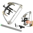 "25lbs Mini Compound Bow Set 14"" Triangle Bow Arrows Archery Hunting Fishing"