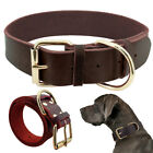 Soft Padded Leather Dog Collar Durable Strong Adjustable for Small Medium Dogs