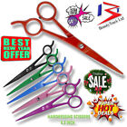 Professional Hairdressing Scissors 6.5